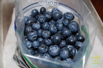 Bag-the-blueberries_logo.jpg