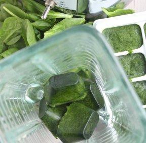 spinachcube.jpg